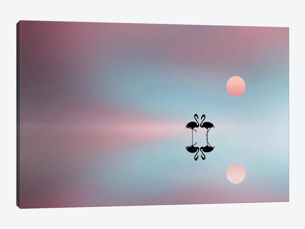 Flamingo by Bess Hamiti 1-piece Canvas Artwork