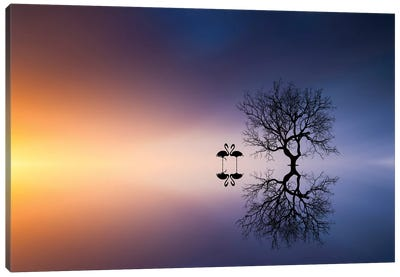 Flamingos In A Lake With A Tree Canvas Art Print