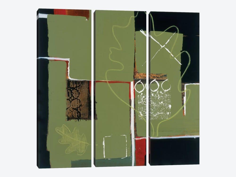 Eco Dream I by Leslie Bernsen 3-piece Canvas Artwork