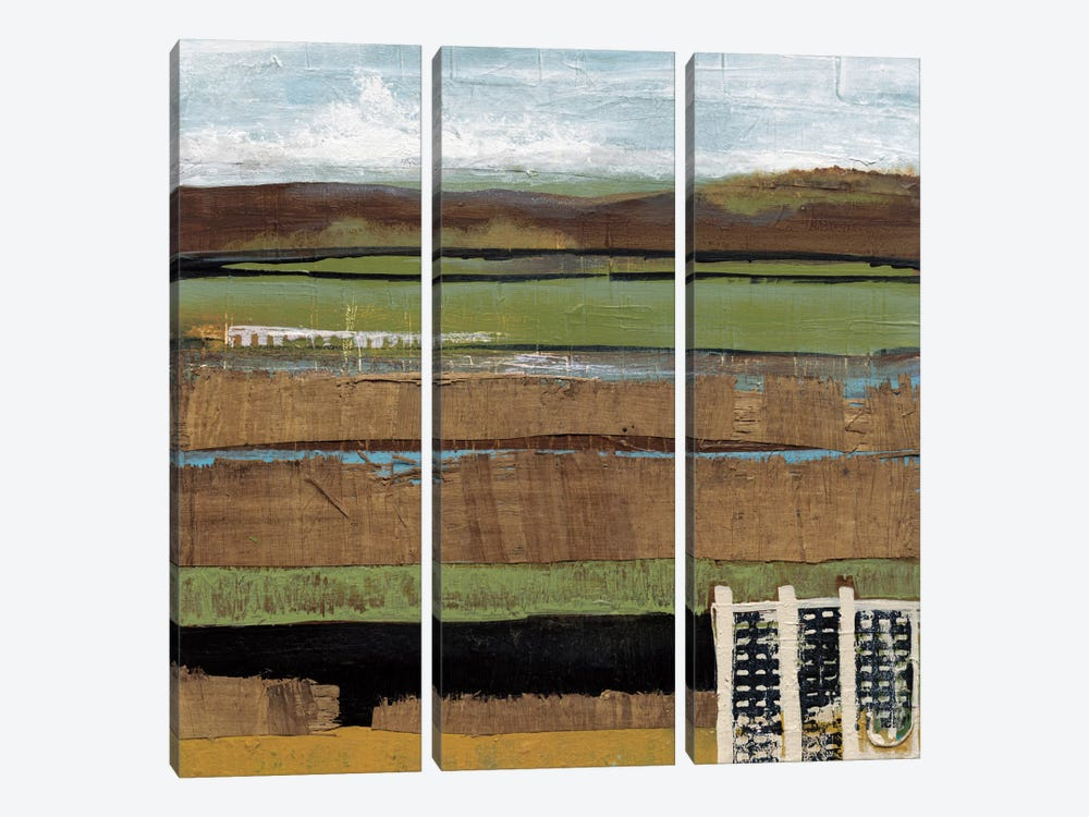 Grazing Range I by Leslie Bernsen 3-piece Canvas Art