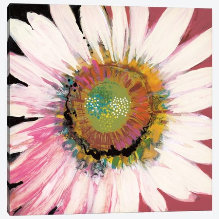 Sunshine Flower I 3-Piece Canvas #BER65} by Leslie Bernsen Canvas Artwork