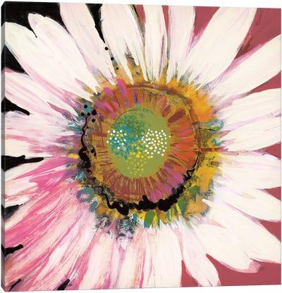 Sunshine Flower I Canvas Art Print