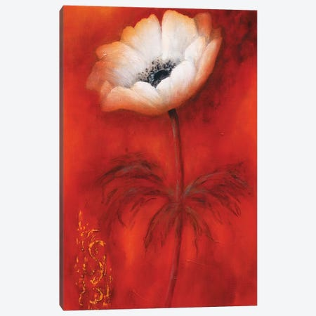 Anemone I 3-Piece Canvas #BET1} by Betty Jansma Canvas Wall Art