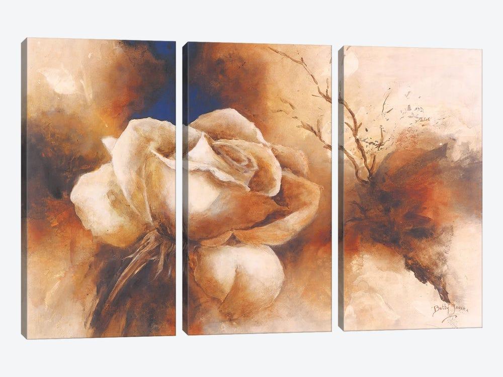 Rose I by Betty Jansma 3-piece Canvas Art