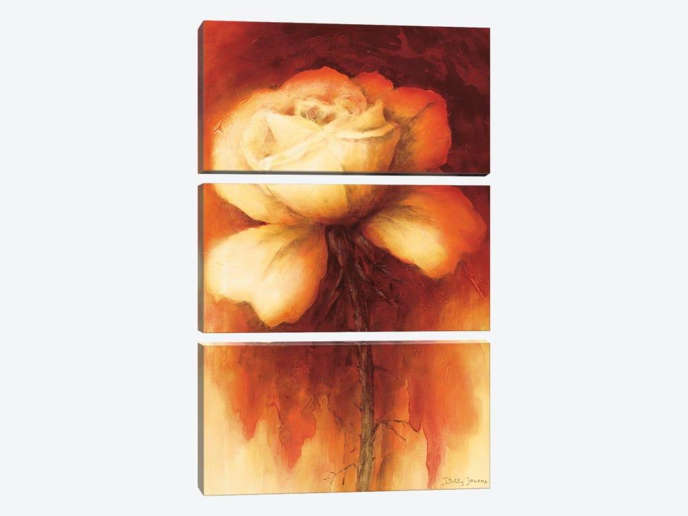 Roses I by Betty Jansma 3-piece Canvas Artwork