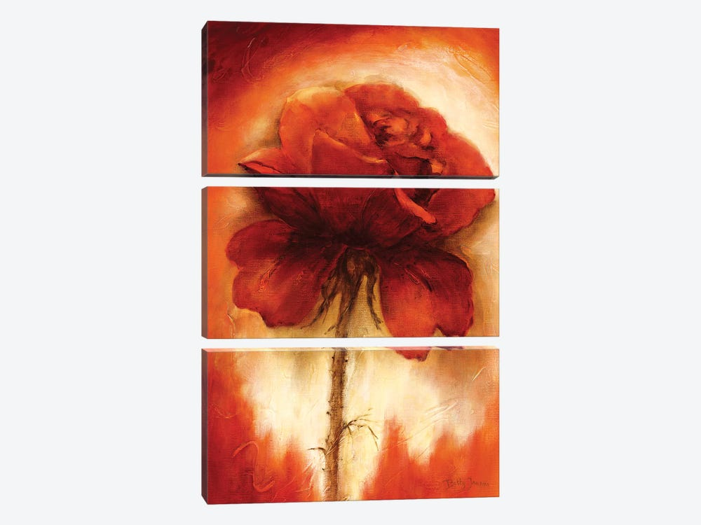 Roses II by Betty Jansma 3-piece Canvas Art Print