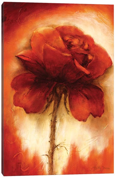 Roses II Canvas Art Print