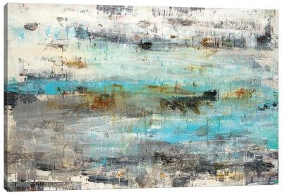 Systemic Canvas Art Print