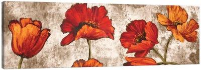 Poppy Paradise Canvas Art Print