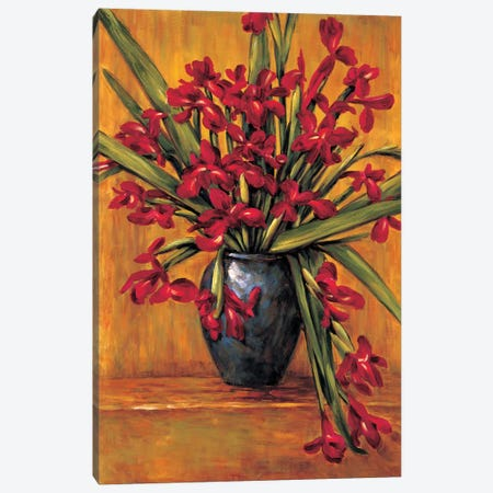 Red Irises Canvas Print #BFR19} by Brian Francis Canvas Artwork