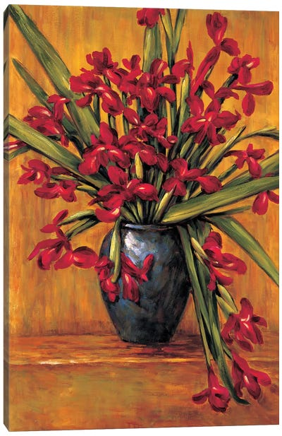 Red Irises Canvas Art Print