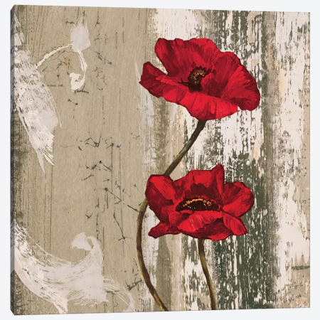 Take Two II Canvas Print #BFR22} by Brian Francis Art Print