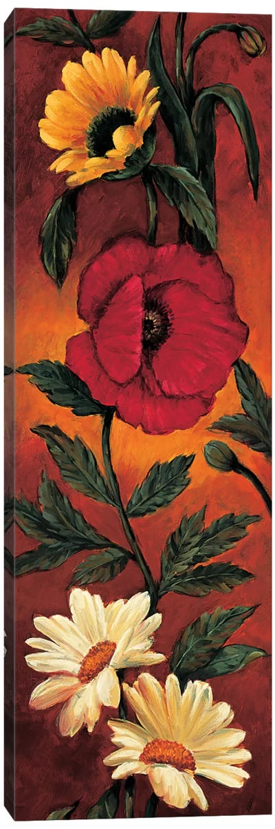 The Flower Garden I Canvas Print #BFR23