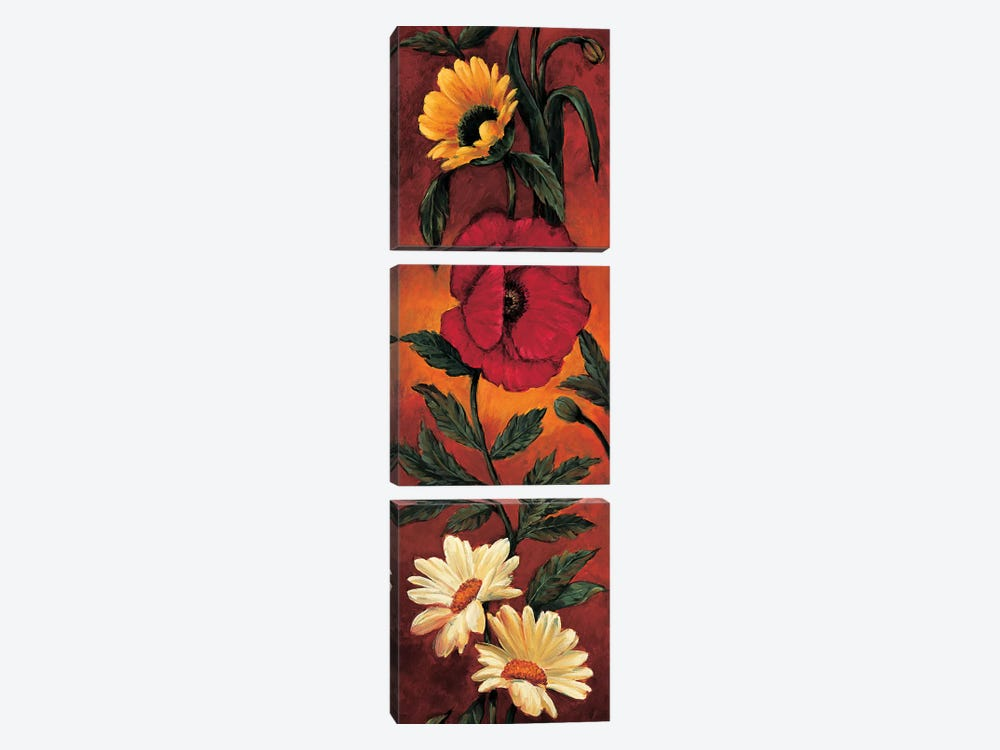 The Flower Garden I by Brian Francis 3-piece Art Print