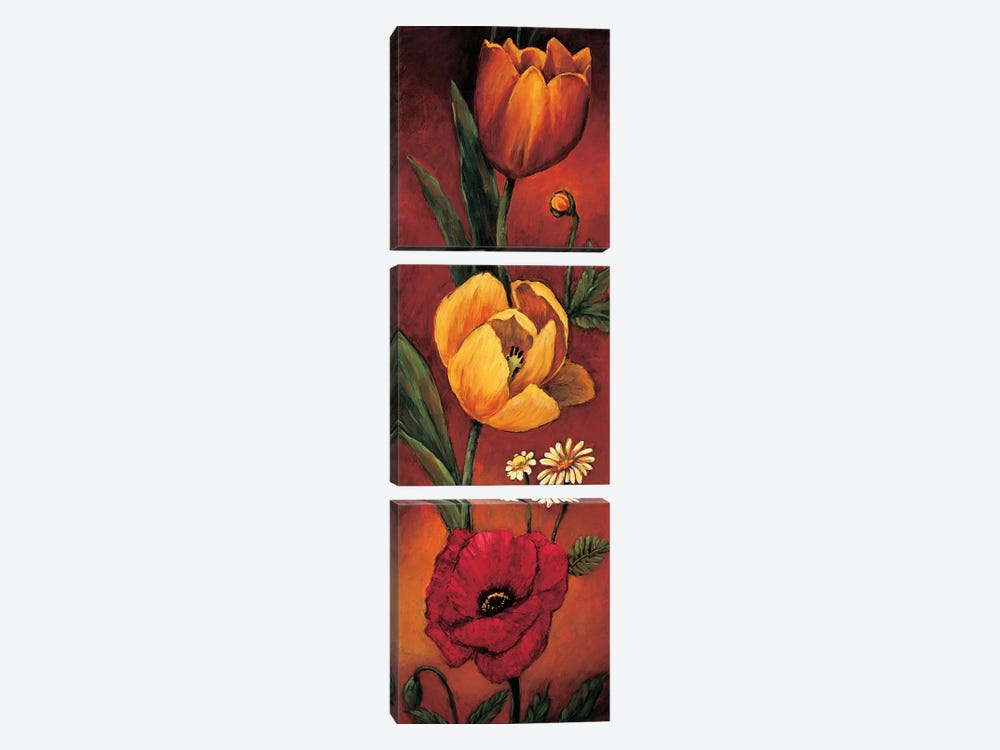The Flower Garden II by Brian Francis 3-piece Canvas Wall Art