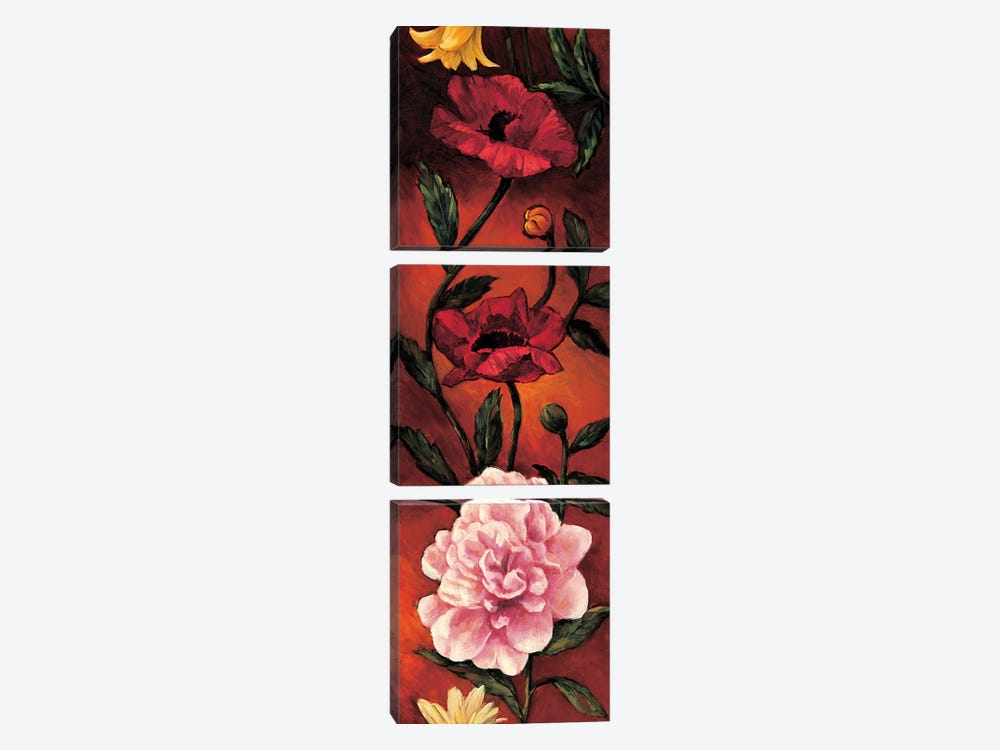 The Flower Garden III by Brian Francis 3-piece Art Print