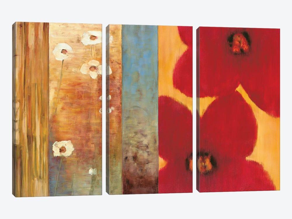 Vibe I by Brian Francis 3-piece Canvas Art