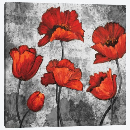 Evening Red I Canvas Print #BFR6} by Brian Francis Canvas Wall Art