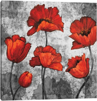 Evening Red I Canvas Art Print