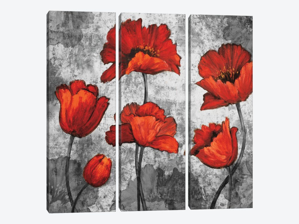 Evening Red I by Brian Francis 3-piece Art Print