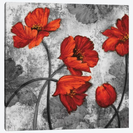 Evening Red II Canvas Print #BFR7} by Brian Francis Canvas Artwork