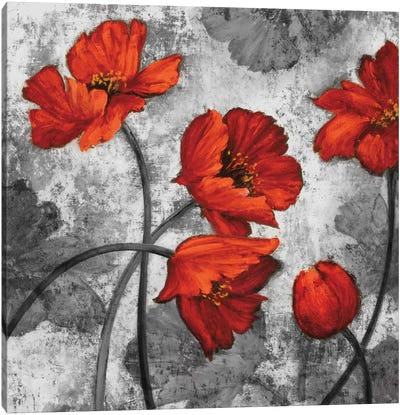 Evening Red II Canvas Art Print