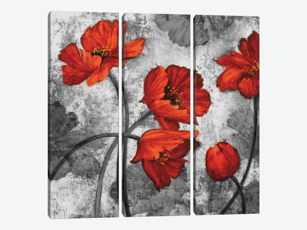 Evening Red II by Brian Francis 3-piece Canvas Artwork