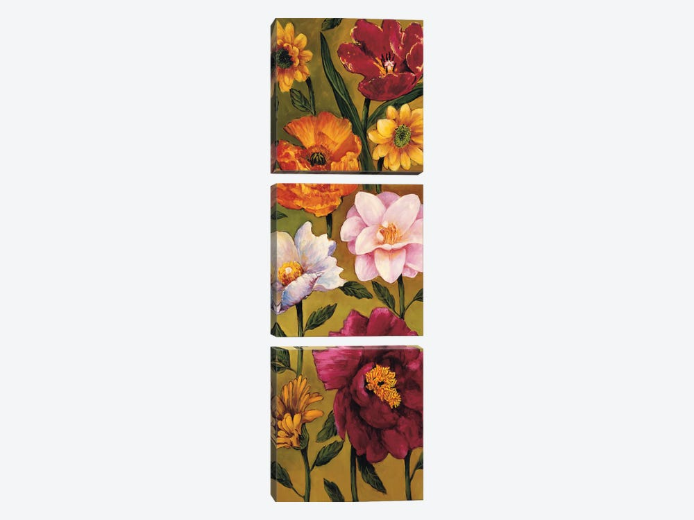 Floral Bouquet II by Brian Francis 3-piece Canvas Artwork