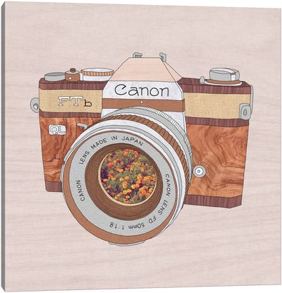 Wood Canon Canvas Art Print