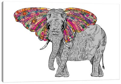 Bella The Happy Butterphant Canvas Art Print