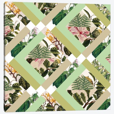 Cubed Vintage Botanicals Canvas Print #BGR71} by Bianca Green Art Print
