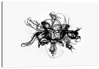 Alchemy Canvas Print #BHE113