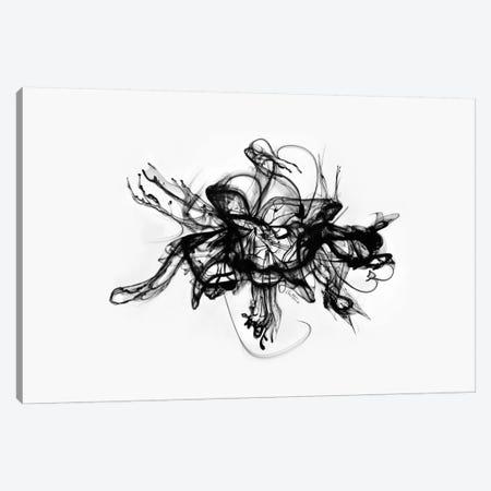 Alchemy Canvas Print #BHE113} by Ben Heine Art Print