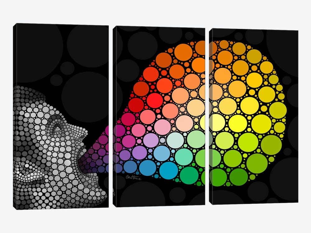 Digital Circlism Series: Give Me Colors by Ben Heine 3-piece Canvas Art Print