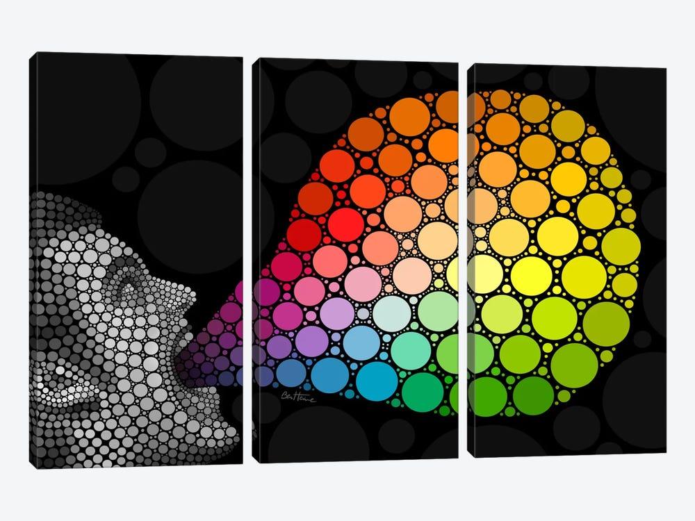 Give Me Colors by Ben Heine 3-piece Canvas Art Print