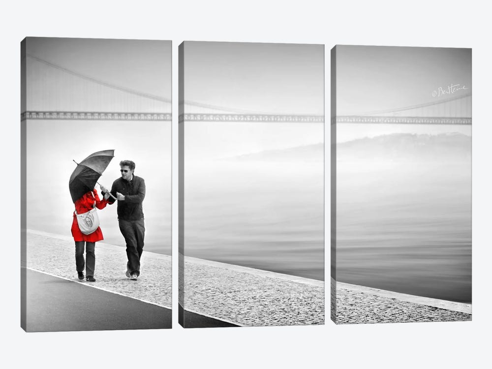 We're In It Together by Ben Heine 3-piece Canvas Wall Art