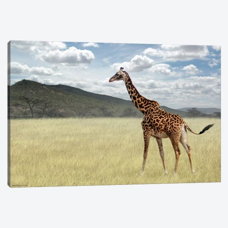 Once Upon A Time In Kenya #3 Canvas Print #BHE158} by Ben Heine Art Print