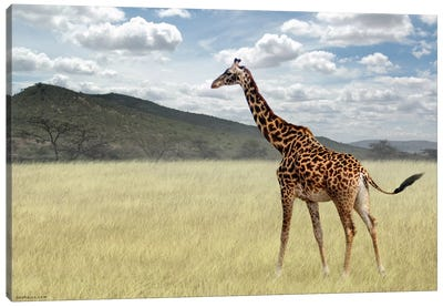 Once upon a time in Kenya #3 Canvas Art Print