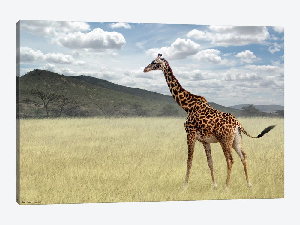 Once Upon A Time In Kenya #3 by Ben Heine 1-piece Canvas Print