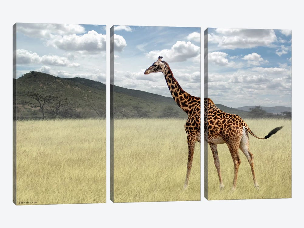 Once upon a time in Kenya #3 by Ben Heine 3-piece Art Print