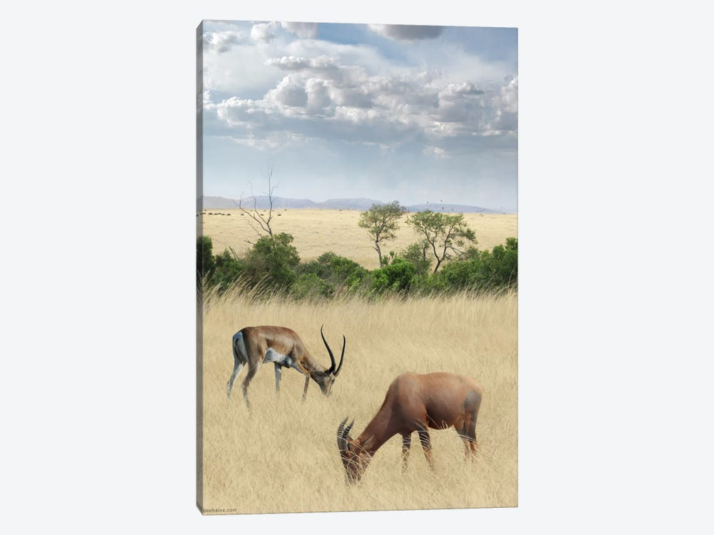 Kenya #2 by Ben Heine 1-piece Canvas Wall Art