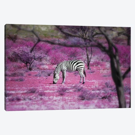 Kenya VII Canvas Print #BHE168} by Ben Heine Canvas Art