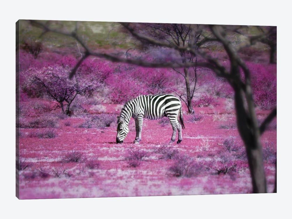 Kenya VII by Ben Heine 1-piece Canvas Artwork