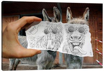 Pencil vs. Camera 12 - Funny Donkeys Canvas Print #BHE17