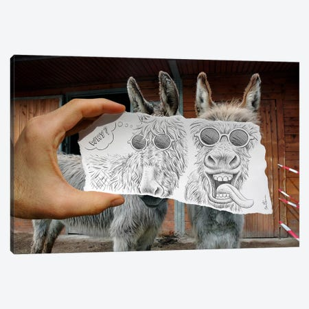 Pencil vs. Camera 12 - Funny Donkeys 3-Piece Canvas #BHE17} by Ben Heine Canvas Print