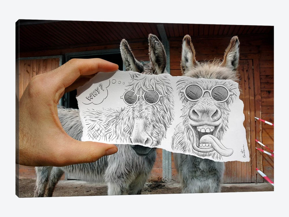Pencil vs. Camera 12 - Funny Donkeys by Ben Heine 1-piece Canvas Art Print