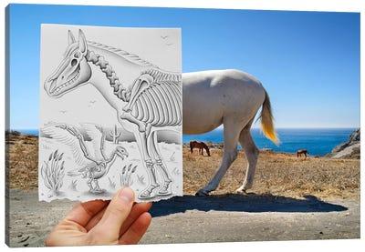 Pencil vs. Camera 40 - X Ray Canvas Print #BHE26