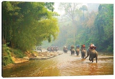 Elephants Balad - Thailand 330 Canvas Art Print