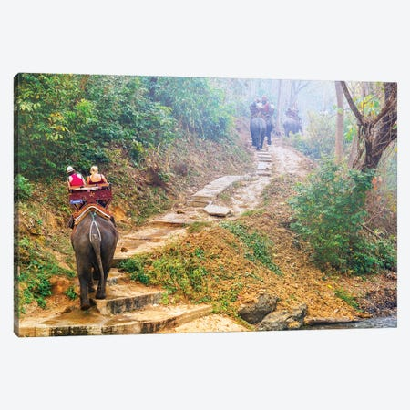 Elephants Walk - Thailand 308 Canvas Print #BHE277} by Ben Heine Canvas Art Print
