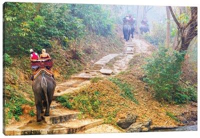 Elephants Walk - Thailand 308 Canvas Art Print